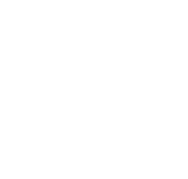 Bo's Bar and Grill